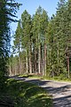Central Finland, Finland - panoramio (8).jpg