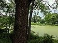 Central Park, New York, NY, USA - panoramio (30).jpg