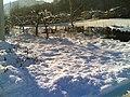 Cervasca in December - panoramio.jpg