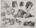 Cesare Biseo, Study of Lions, 1867, NGA 161121.jpg