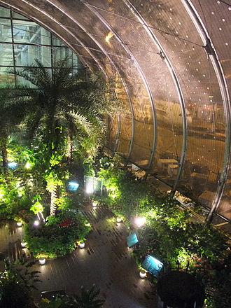 Singapore Changi Airport Terminal 3 - The butterfly garden in the terminal