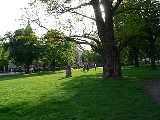 Charlottenburg - Alt-Lietzow village green