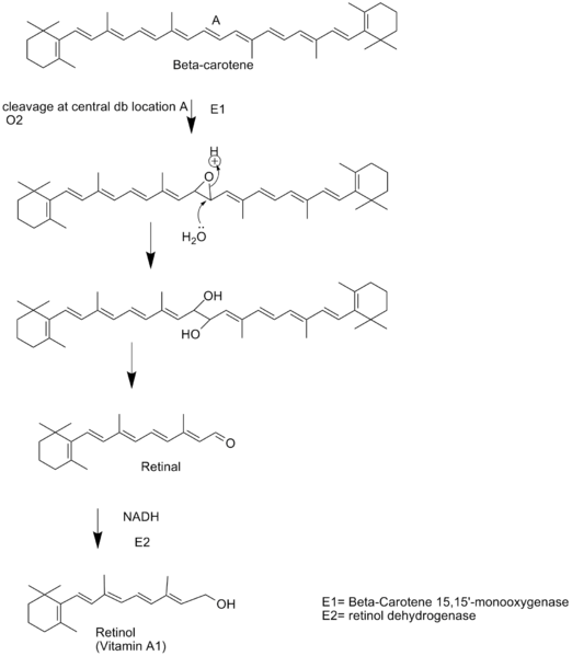 File:Chem 157 vitamin a synthesis project.png