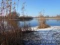 Cherkas'kyi district, Cherkas'ka oblast, Ukraine - panoramio (796).jpg
