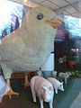 Chicken in the museum.jpg