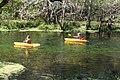 Children paddling down the Ichetucknee River.jpg