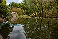 Chinese Garden of Friendship, Sydney IMG 5575 - panoramio.jpg