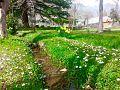 Chitral 33 Pakistan.jpg