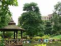 Chitvan (Hindi- चितवन) (818915931).jpg