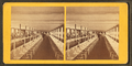Clam House Dining Room, Rocky Point, R.I, from Robert N. Dennis collection of stereoscopic views 6.png