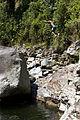 Cliff Jumping (5479988717).jpg