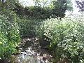 Clitterhouse Stream.JPG