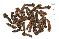 meaning of clove