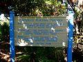 Cocoa Beach at Lori Wilson Park - Flickr - Rusty Clark (35).jpg