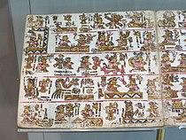Codex Bodley (1).jpg
