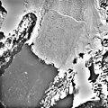 Columbia Glacier, Calving Terminus, Terentiev Lake, Heather Island, March 12, 1989 (GLACIERS 1436).jpg