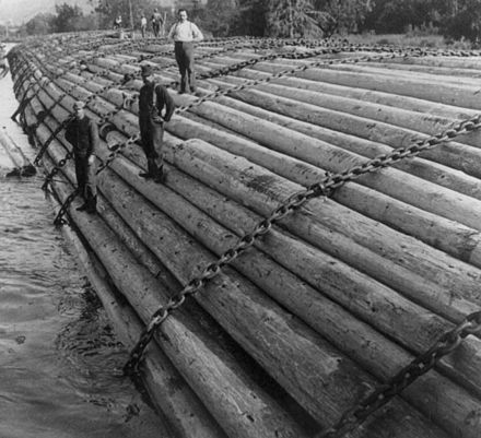 A massive Benson log raft, containing an entire year's worth of logs from one timber camp, heads downriver in 1906. Columbia Log Raft.jpg