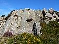 Columns of volcanic rock on Garn Fawr - geograph.org.uk - 537950.jpg