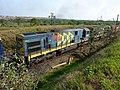 Comboio que saía sentido Guaianã do pátio da Estação Ferroviária de Salto - Variante Boa Vista-Guaianã km 210 - panoramio (2).jpg