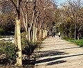 Comienzan las obras de regeneración del parque Enrique Tierno Galván 02.jpg