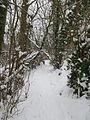 Coteau sous la neige.JPG