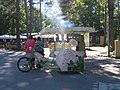 Cotton candy sellers in Riga park.jpg