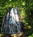 Crabtree Falls (North Carolina).jpg