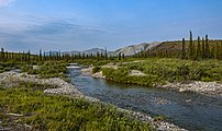 Crooked Creek landscape, Ivvavik National Park, YT.jpg