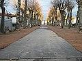 Cusset - Cours Lafayette 2014-12-21.JPG