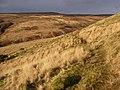 Cwm Pedol in January sunshine - geograph.org.uk - 1670292.jpg