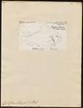 Cyclopterus lumpus - 1700-1880 - Print - Iconographia Zoologica - Special Collections University of Amsterdam - UBA01 IZ13600149.tif