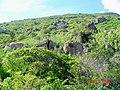 DISTRITO DE BAIXA GRANDE, TORRÃO NATAL - panoramio.jpg