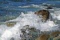 DSC02981 - Wave Action... (44061472205).jpg