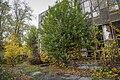 Dacha Durnovo, St Petersburg04.jpg
