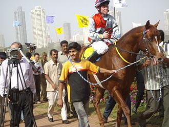 Collar (animal) - A yellow neck strap on a racehorse.
