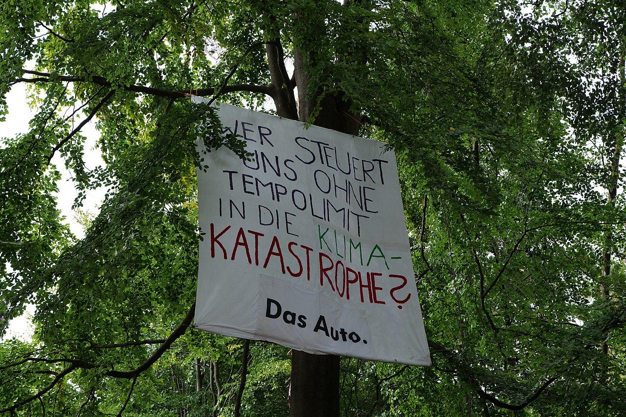 Dannenrod Forest occupation 2020-10-04 02.jpg