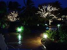 Daydream Island-Attractions-Daydreambynight05