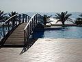 Dead Sea 5.jpg
