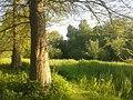 Delft - 2013 - panoramio (940).jpg