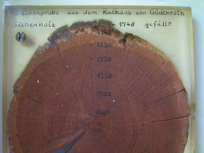 File:Dendrochronologie.jpg