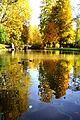 Der Bad Mergentheimer Kurpark im Herbst. 04.jpg
