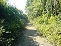 Derelict Road - geograph.org.uk - 25878.jpg