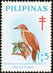 Dinopium everetti 1969 stamp of the Philippines.jpg