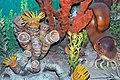 Diorama of a Pennsylanian seafloor - Caninia rugose corals, sponges, nautiloid, algae 2 (45642214981).jpg