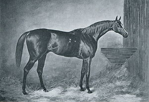 Doncaster (horse) - Image: Doncaster (GB)