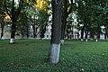 Dostoevskogo park 1.jpg