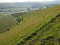 Downland, Great Wishford - geograph.org.uk - 484468.jpg