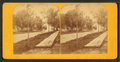 Dr. Torsey's residence and street view, from Robert N. Dennis collection of stereoscopic views.png