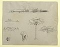 Drawing, Sketches from Colombia- River Landscape, Men on Rafts, and Trees, 1853 (CH 18200843).jpg