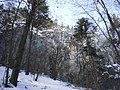 Dubová - panoramio.jpg